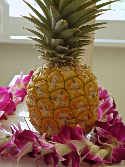 Maui Gold Mini Hawaiian Pineapple