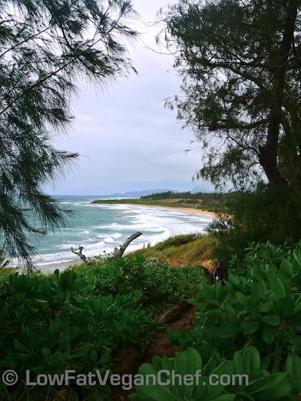 Kealia Lookout Kauai Hawaii