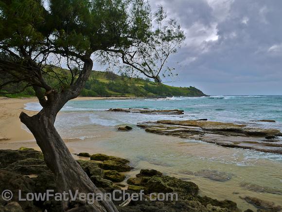 Moloaa Beach Kauai Hawaii