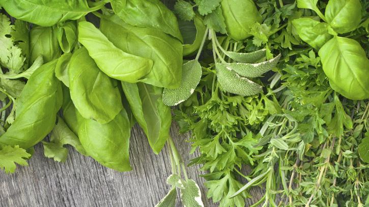 fresh-herbs-1